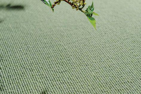 Garden Artichoke 0046, from EC Group's Garden carpet range.