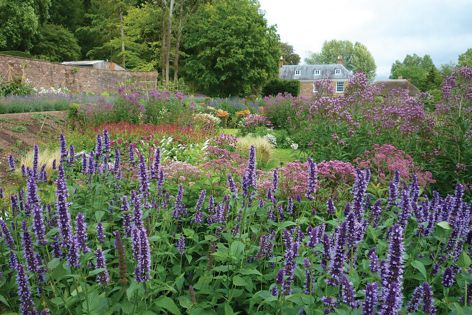 Kittsford private garden in Somerset, UK by Andy Hamilton Studio. Photography: Courtesy of Andy Hamilton Studio.