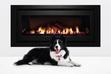 1250 gas fireplace by Rinnai