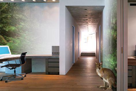 Environmentally friendly Gyprock EC08 plasterboard is certified by GECA.