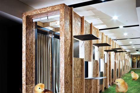 Retail Design Award winner The Coop by Matt Gibson A + D.