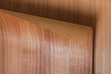 The beauty of real timber with WoodWall