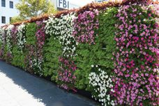 Garsy Greenwall system from KHD