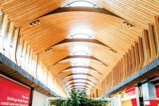 Curved walls and ceilings from Supawood