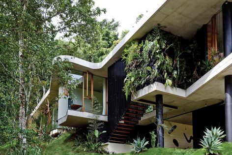 Planchonella House by Jesse Bennett Architect. Winner: Australian House of the Year and New House over 200 m2. Photography: Sean Fennessy.